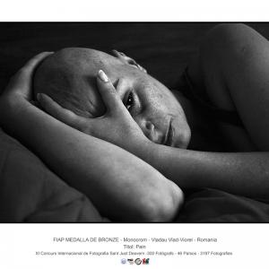 3.-Pain_VLADAU-VLAD-VIOREL_ROMANIA_FIAP-BRONZED-MEDAL_383022