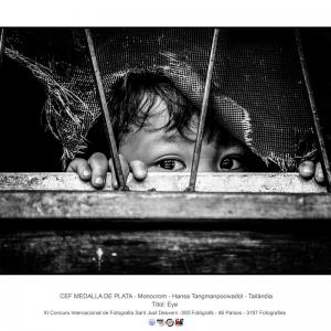 8.-Eye_HANSA-TANGMANPOOWADOL_THAILAND_CEF-SILVERED-MEDAL_382002