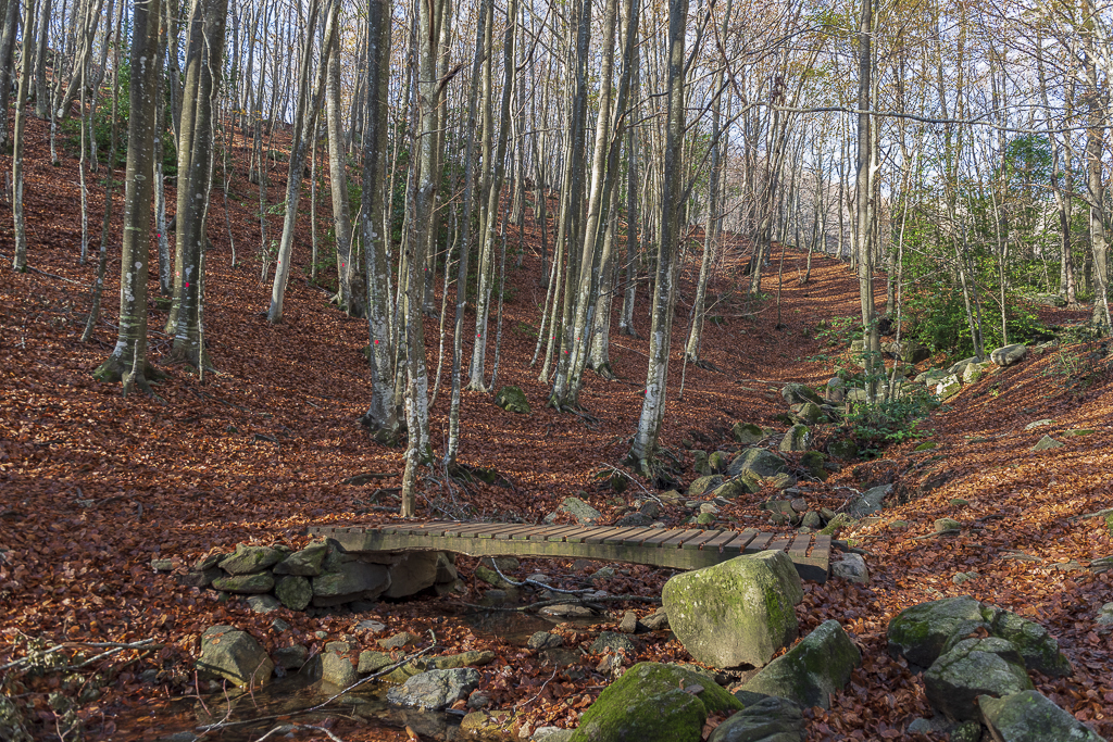 2020 Santa Fe del Montseny